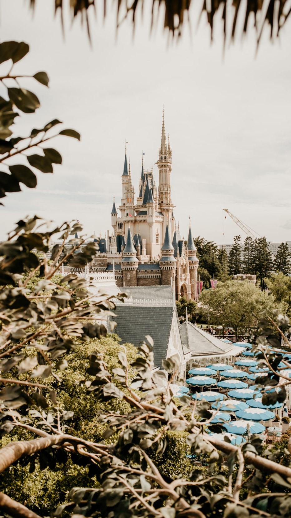 5 reasons to visit Tokyo Disneyland